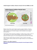 Organic Fertilizer Market Expected to Reach US$ 10.23 Billion By 2025