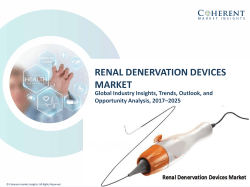 Renal Denervation Devices Market - Industry Analysis, Size, Share, Growth, Trends and Forecast to 2025