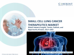 Small Cell Lung Cancer Therapeutics Market on the basis of diagnosis, types, treatment, drug therapy, and end user - Global Industry Insights, 2025