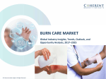 Burn Care Market, by Type of Burn, Product Type, and End User - Outlook and Opportunity Analysis, 2017-2025