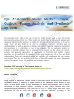 Eye Anatomical Model Market Countermeasures of Economic Impact Channels to 2026