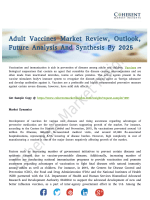 Adult Vaccines Market Headed for Global Expansion by 2025