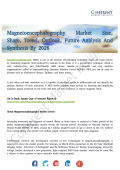 Magnetoencephalography Market Key Development Opportunities Till 2026