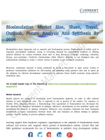 Biosimulation Market is Expected to Witness a CAGR of 15.4% By 2026