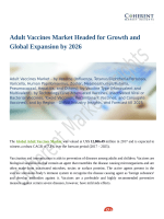 Adult Vaccines Market Shows Expected Growth from 2018-2026