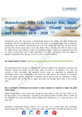Mesenchymal Stem Cells Market Anticipates Steady Growth Till 2026