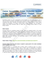 Custom Recombinant Protein Production Services Market Trends and Opportunities to 2026