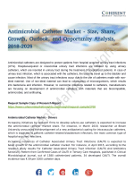 Antimicrobial Catheter Market