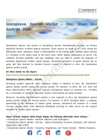 Interspinous Spacers Market