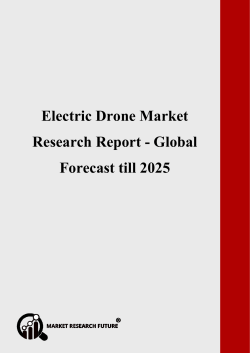 Electric Drone Market